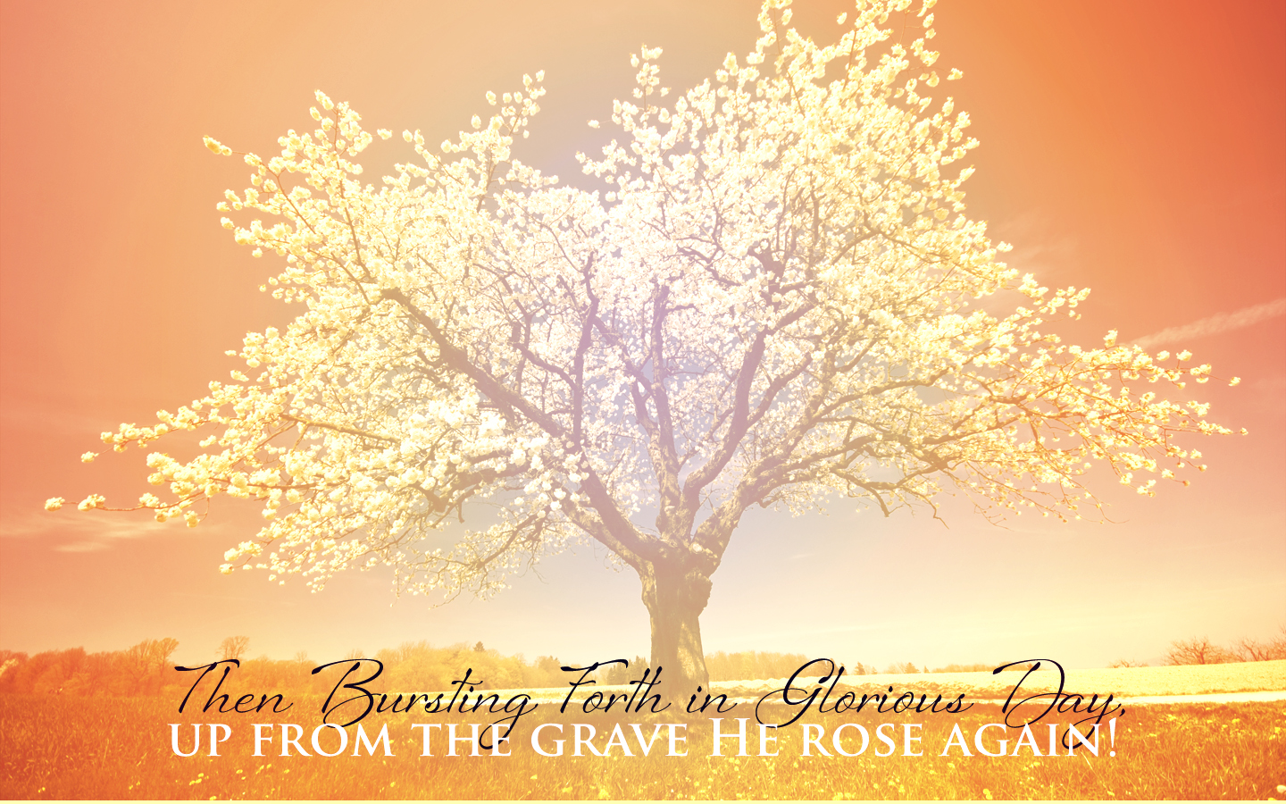 Ten Quotes on the Resurrection